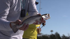 Speckled Trout with the Redfish Mafia