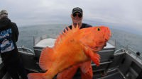 Captain Jacob Elfrink catches a Yelloweye Snapper while saltwater fishing out of Seward, Alaska