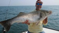 Mark Davis of BigWater Adventures catches a 52 pound striper while saltwater fishing out of Montauk, New York